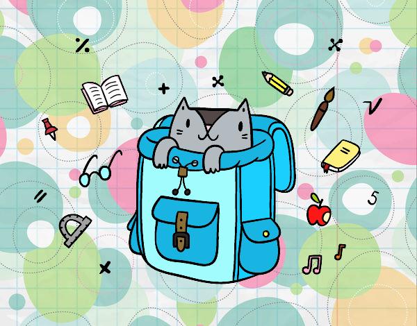 Gato em uma mochila