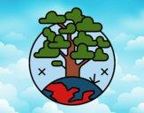 Desenho Círculo árvore pintado por Craudia