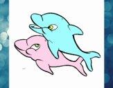 Golfinhos brincando