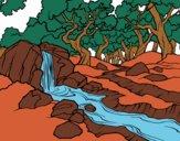 Desenho Paisagem da floresta com um rio pintado por vivihsanto