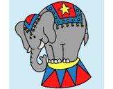 Desenho Elefante a actuar pintado por ThaySilvaa