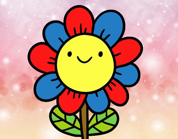 linda flor da Aninha