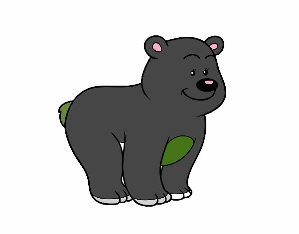 Urso simpático