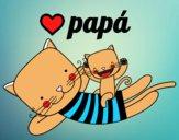 Papai gato
