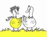 Par de patos
