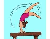 Exercício sobre potro