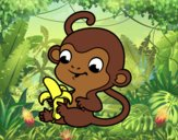Macaco com banana