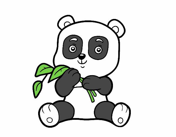 Urso Para Colorir E Pintar 8: 35 Desenhos De Ursinhos Para