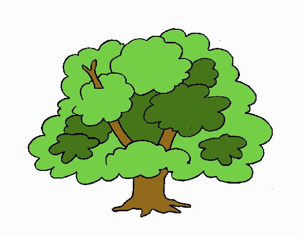 Desenho De árvore Pintado E Colorido Por Usuário Não Registrado O