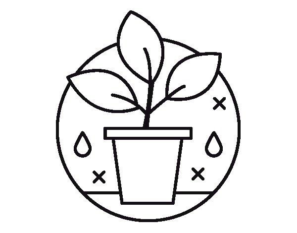 Desenho de Agricultura biológica para Colorir