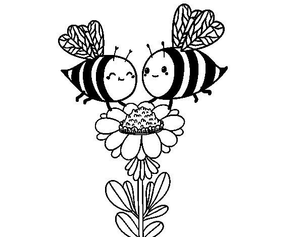 Desenho de Algumas abelhas para Colorir