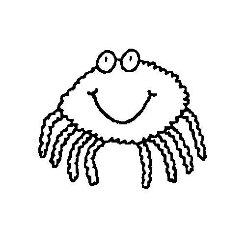 Desenho de Aranha 4 para Colorir