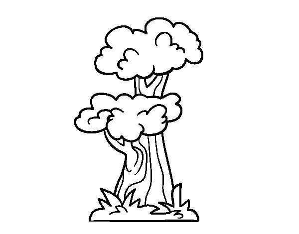 Desenho de Árvore japonesa para Colorir