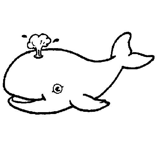 Desenho de Baleia a expulsar água para Colorir