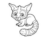 Desenho de Bassariscus para colorear