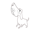 Desenho de Basset Hound para colorear