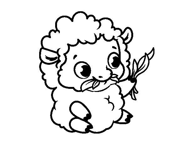 Desenho de Bebê ovelha para Colorir