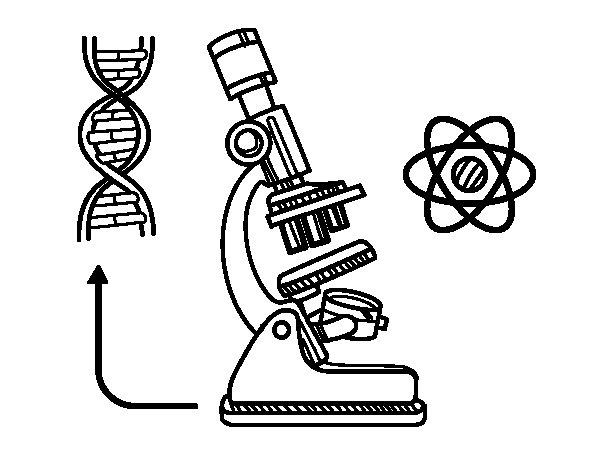 Desenho de Biologia para Colorir