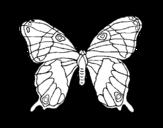 Dibujo de Borboleta silvestre