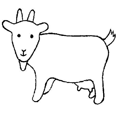 Desenho de Cabra 2 para Colorir