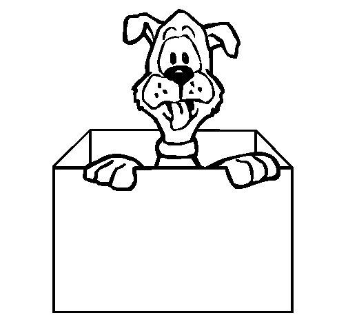 Desenho de Cão dentro da caixa para Colorir
