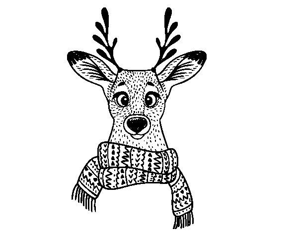 Desenho de Cervos com lenço para Colorir