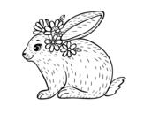 Desenho de Coelho primaveral para colorear
