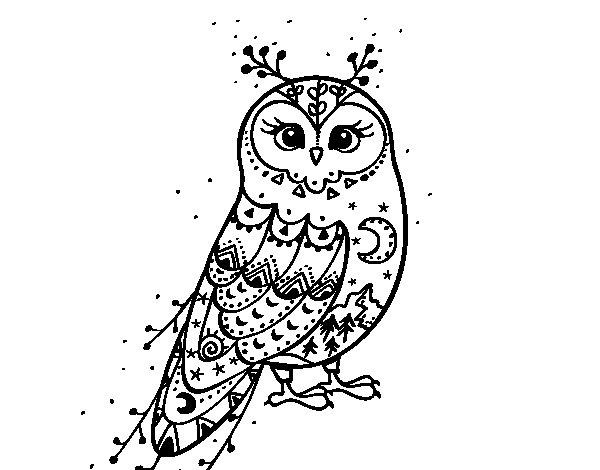 Desenho de Coruja do inverno para Colorir