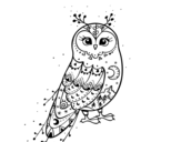 Desenho de Coruja do inverno para colorear