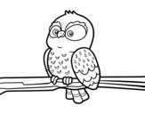 Desenho de Coruja em um ramo para colorear