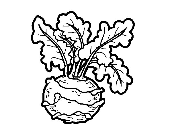 Desenho de Couve-rábano para Colorir