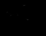 Desenho de Cria de guepardo a correr para colorear