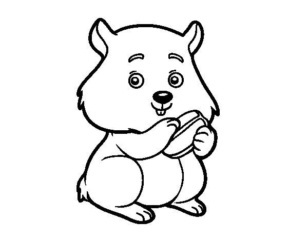 Desenho de Criceto gorducho para Colorir