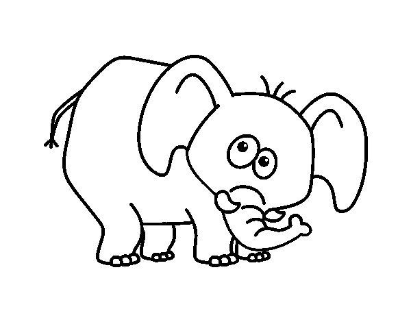 Desenho de Elefante envergonhado para Colorir