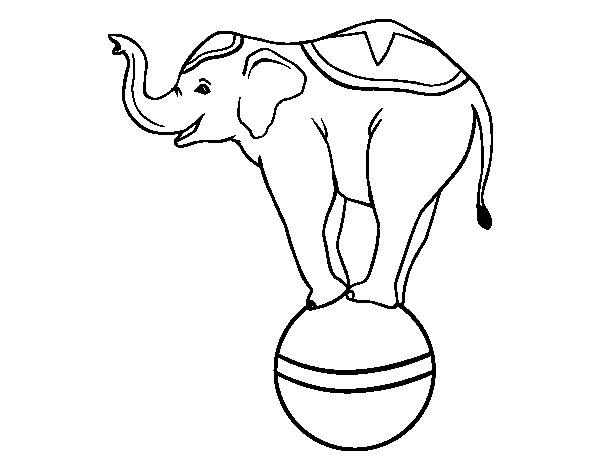 Desenho de Elefante equilibrista para Colorir