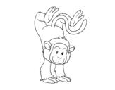 Desenho de Equilibrista macaco para colorear