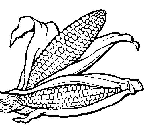 Desenho de Espiga de milho  para Colorir