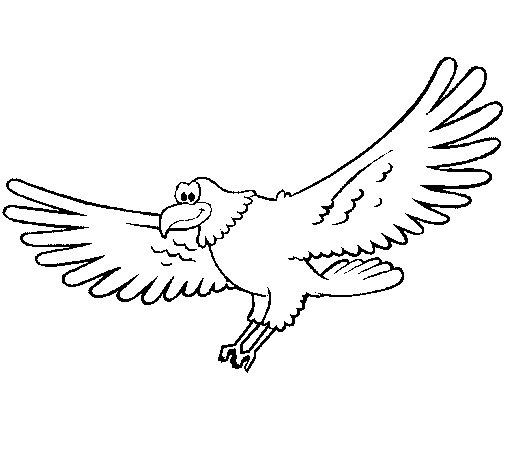 Desenho de Falcão para Colorir