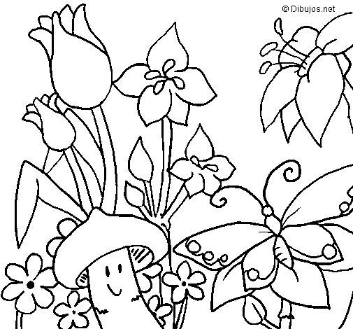 Desenho de Fauna e Flora para Colorir