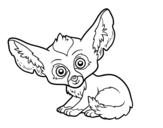 Desenho de Feneco para colorear