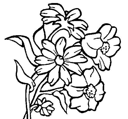 Desenho de Flores para Colorir