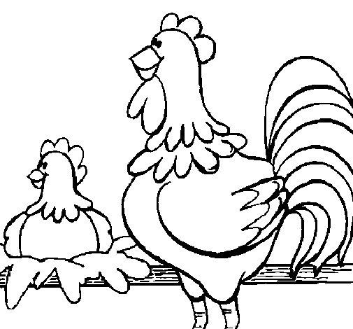 Desenho de Galo e galinha para Colorir
