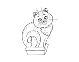 Desenho de Gatinho em uma caixa para colorear
