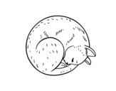 Desenho de Gatinho repousando para colorear