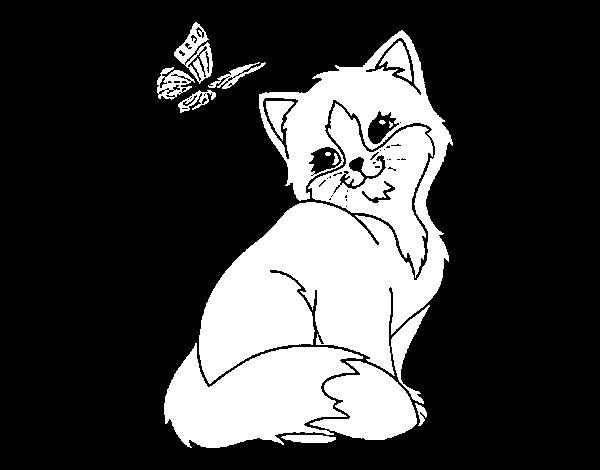 Desenho de Gatito e Borboleta para Colorir