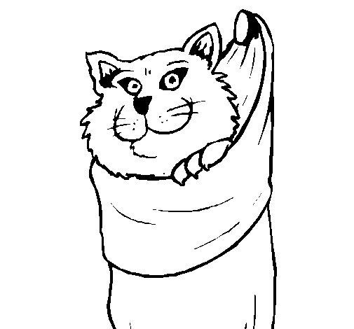 Desenho de Gato dentro de uma meia para Colorir