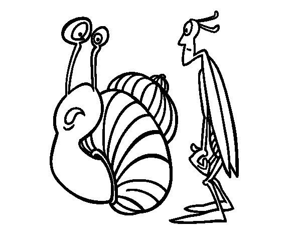 Desenho de Grilo e Caracol para Colorir