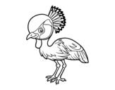 Desenho de Grou-coroado-oriental para colorear