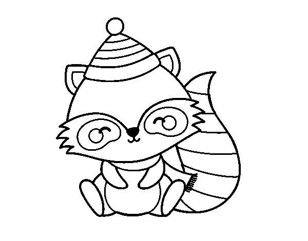 Desenho de Guaxinim quente para Colorir