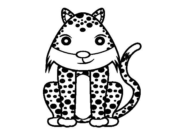 Desenho de Guepardo fêmea para Colorir